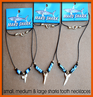 shark-tooth-necklace--medium-